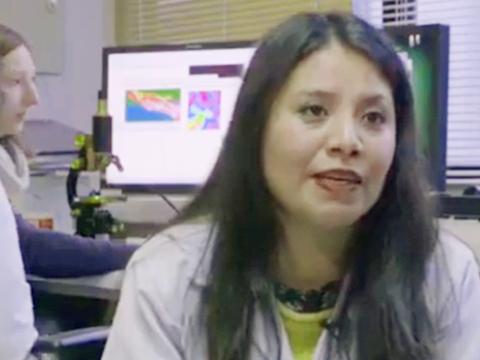Dra. Rosario Castillo integra grupo internacional que busca aportar a una industria alimentaria más sana y sustentable