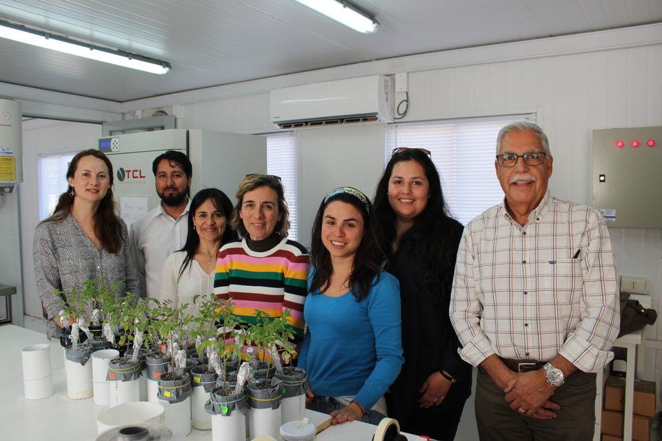 Expertos locales e internacionales analizan el impacto del biocarbón y su uso en la agricultura