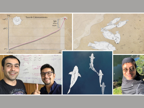 Científicos UdeC descubren efectos del Calentamiento Global en peces